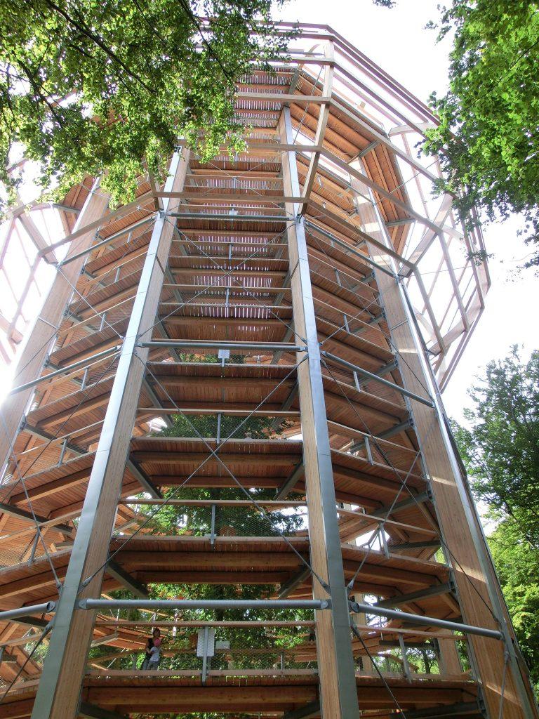 Ein Bild, welches ein Holzkonstrukt enthält - der Adlerhorst Baumwipfelpfad Prora